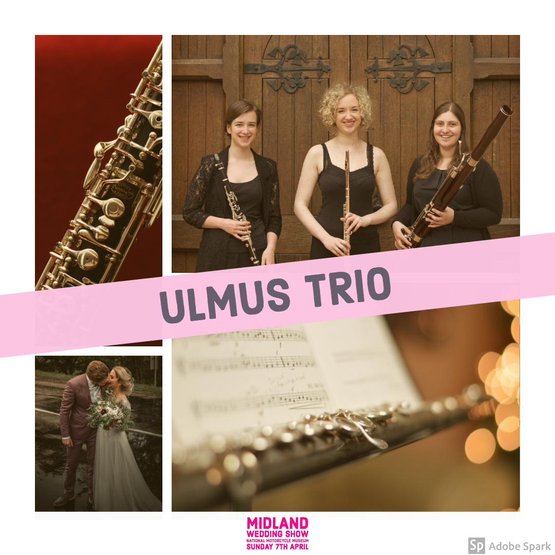 Ulmus trio wedding band at Midland Wedding Show wedding fair 7th April 2019